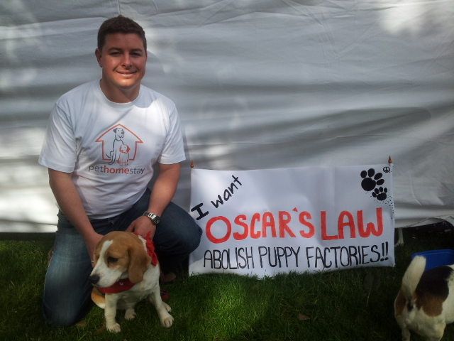 Oscars Law banner